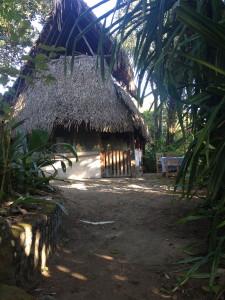 Casa Iguana. My home away from home