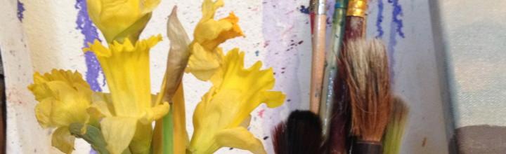 Daffodil January